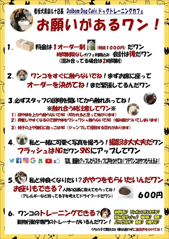 sub_22.jpg